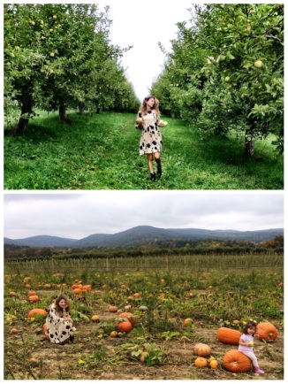Apple & Pumpkin picking in the Hudson Valley, NY